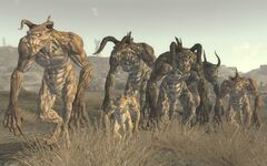 FNV deathclaw lineup