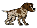 German Pointer.png