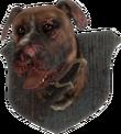 FO4-Mounted-Dog-Head