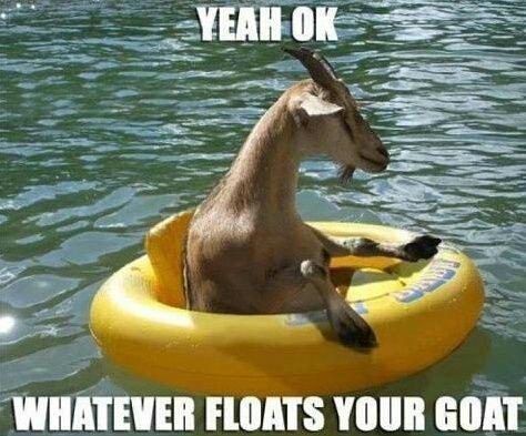 File:Goatfloat.jpg