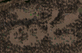 Fo2 Arroyo Hunting Grounds.png