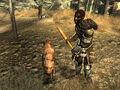 Raider guard dog KBB.jpg