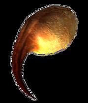 Barkscorpion poison gland