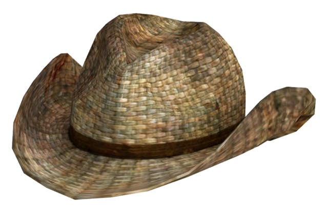 File:Rattan cowboy hat.png