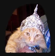 File:Cat in a tin foil hat.jpeg