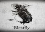 Bloatflystory