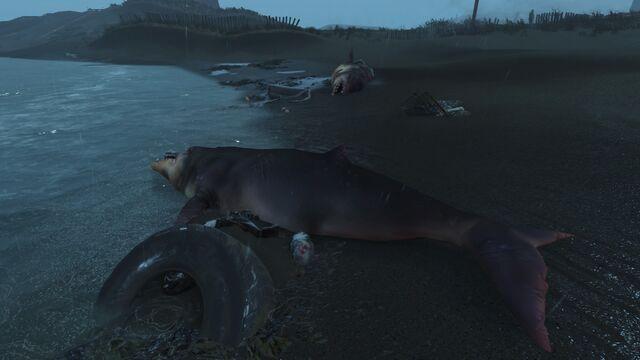 File:FO4 Sea creatures NStar wreck 3.jpg