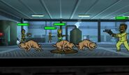 FalloutShelter ScreenShot Attack