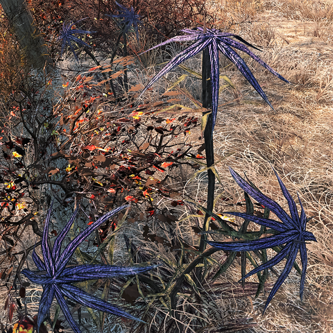 File:Fo4-Irradiated Thistle.png