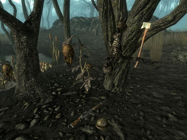 File:Tree landing.jpg