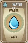 300 Water card