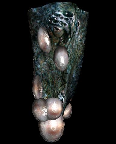 File:Mirelurk clutch stalactite.png