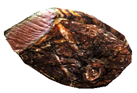 File:Deathclaw steak.png