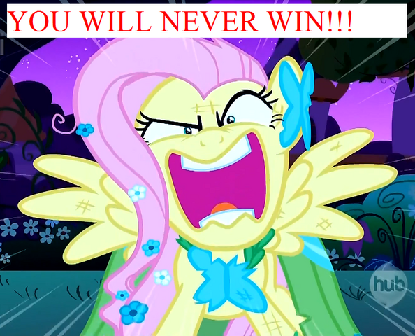 File:YOUWILLNEVERWIN.png