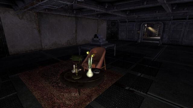 File:Vault11 Sacrificial Chamber.jpg