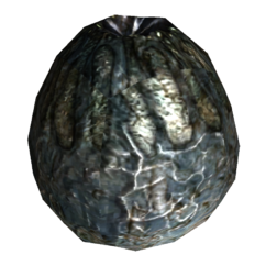 FNV radscorpion egg