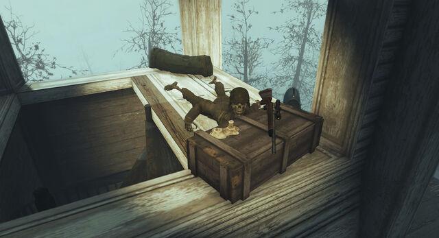 File:RuinedChurch-Skeleton-FarHarbor.jpg