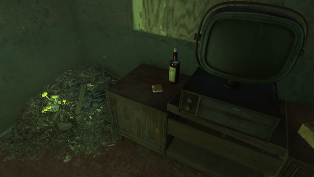 File:FO4 Ladies auxiliary tape 8.png