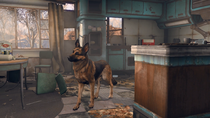 DogFO4