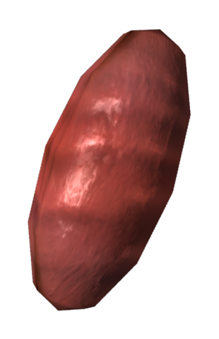 File:Fire ant egg.png
