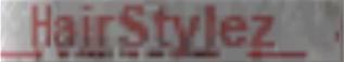 File:Hairstylez logo.png