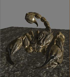 File:Sandscorpionv2.jpg