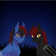 Midnight and Scarlet small