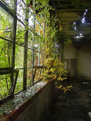 Overgrownbuilding