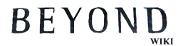 File:BeyondWiki-wordmark (white).png