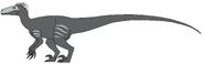 Skull Raptor