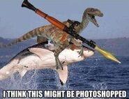 Awesomeness Raptor