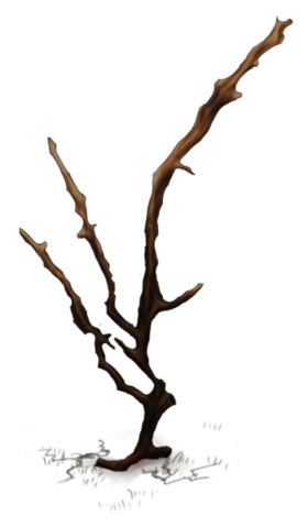 File:Crag Island Medium Tree.png