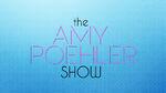 The Amy Poehler Show