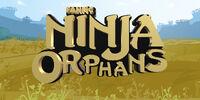 Ninja Orphans