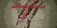Werewolf (The Supernaturals)