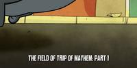 The Field of Trip of Mayhem
