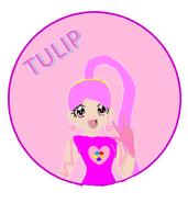 Cure Tulip head profile