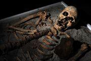 Vampire Fossil