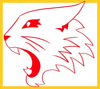 How-to-draw-high-school-musical-wildcats-logo-tutorial-drawing