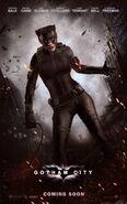 Batman 3 poster catwoman by joshwmc