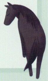 Rin Sohma horse