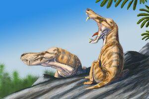 Pristerogathus