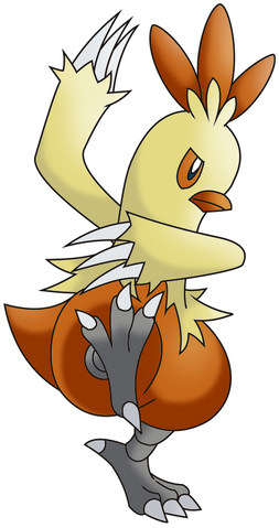 File:Combusken.png