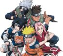 Fanstories of Naruto Wiki