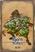 Bjorn - Elder Gnome