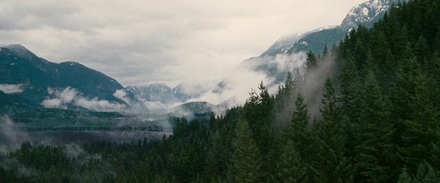 File:Black Forest.png
