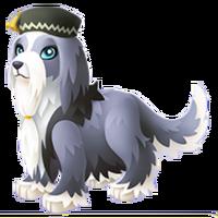 Dumbledog Adult