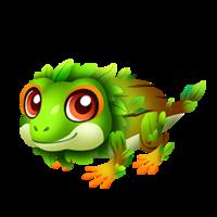 Tree Frog Juvenile