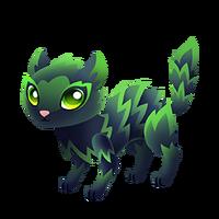Scaredy Cat Juvenile
