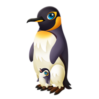Papa Penguin Adult